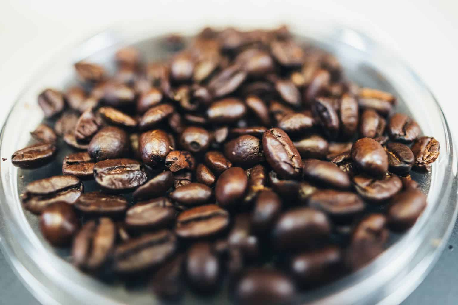 gourmet organic coffee